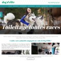 Toilettage canin & vente accessoires animaux (78)