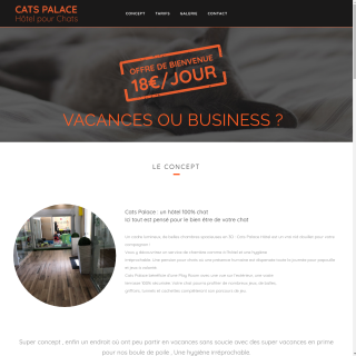 Cat palace, pension pour chat Cannes