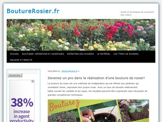 Guide de la bouture de rosier